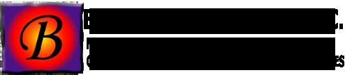 Brozinick Consulting, Inc. Logo
